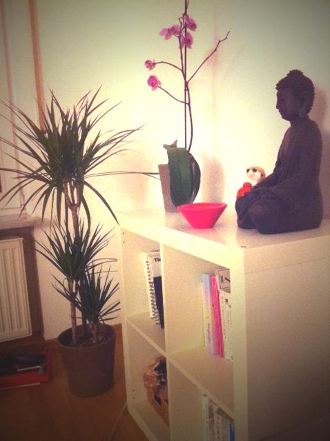 expedit-buddha